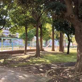 お部屋の近くには緑を感じる公園もありました