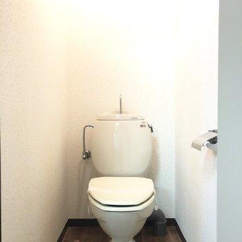 丸みのある可愛いトイレです。