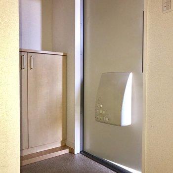 玄関は少々手狭かもしれません※フラッシュを利用して撮影しています。