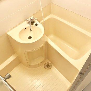 洗面台に歯ブラシを立てて。