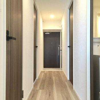 手前ドアが水回り、奥のドアは洋室のドアです。
