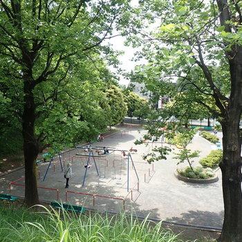 神ノ木公園では賑やかな声が聞こえて来ますよ。