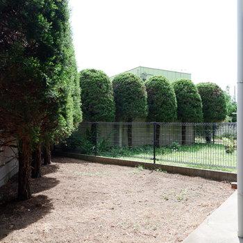 もうひとつ専用庭が。日もあたり、洗濯物も干せますね。