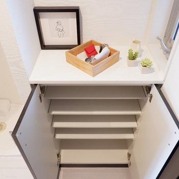 靴箱は一人分くらい。上のスペースに小物などをどうぞ。※写真は5階の同間取り別部屋のものです