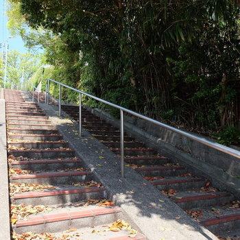お部屋の近くには階段!運動です!