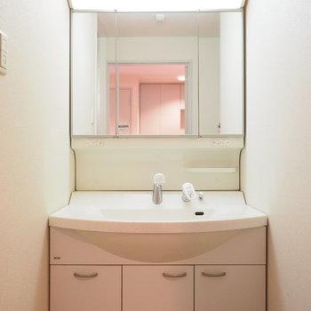 大きめの洗面台。※写真は同間取り別部屋です