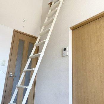 はしごを登ると、、