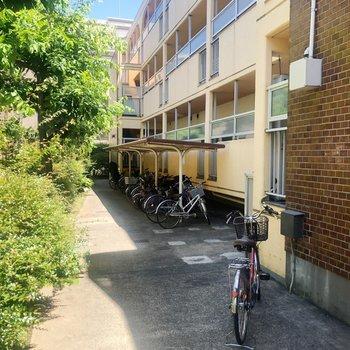 共用部の自転車置き場。