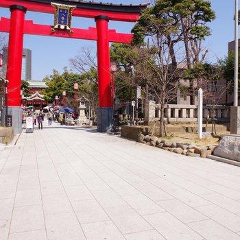 青空マーケットが開かれる富岡八幡宮