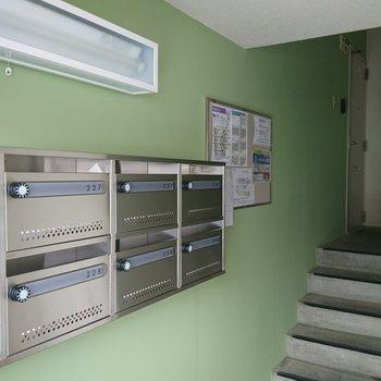 ピカピカのメールボックス!きみどり色の壁が映えてます