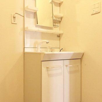 洗面台はスタンダード!※写真は別部屋のものです