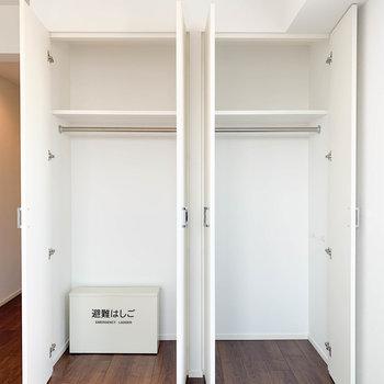 収納棚が2台。しっかり収納できそう〜