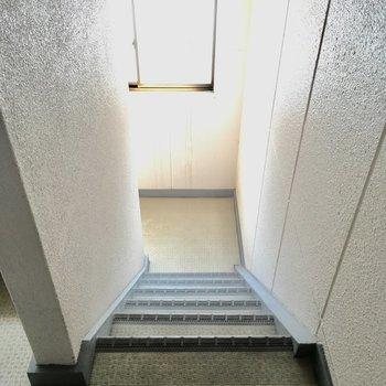 階段は1人が通れるくらいのサイズ。譲り合いの気持ちを忘れずに。
