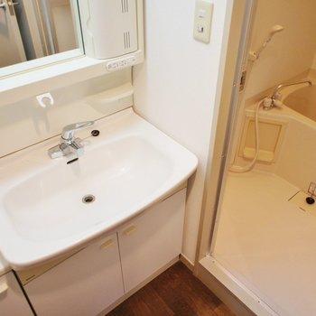 洗面台は大きいサイズのものを。※写真は1階の同間取り別部屋のものです