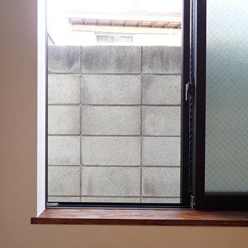 眺望は隣の塀です。まさにコンクリートジャングル。