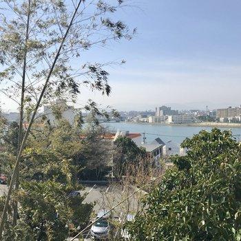 その駐輪スペース辺りからの眺め。河川敷ってどんな感じなんだろう、、、。