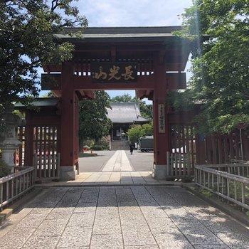 【おまけ】駅名の由来になった妙蓮寺・滝がきれいなのでぜひ行ってみてください