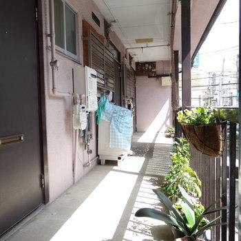 共用部に洗濯機置場。レトロだけどお花が植えてあって癒やされます!