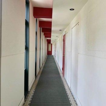 共用廊下も窓が沢山で明るい!