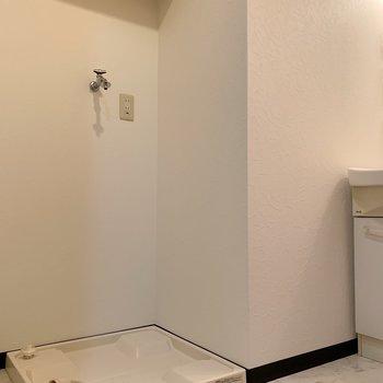 そして、脱衣所へ。もちろん洗濯機置場もあり。