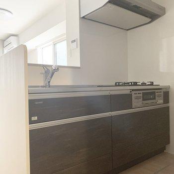 反対側には冷蔵庫スペース。