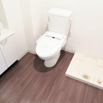 トイレは脱衣所の中にあります。いつでも綺麗にしておきたいですね!