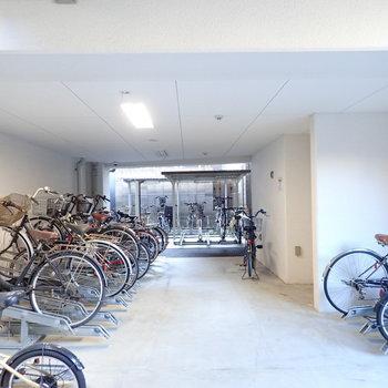 共用部】駐輪場は大きめで、あちこちにありました。