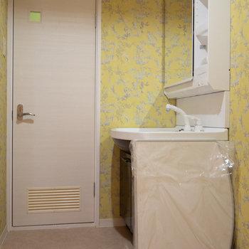 洗面台もあります。 ドアの先はトイレです。