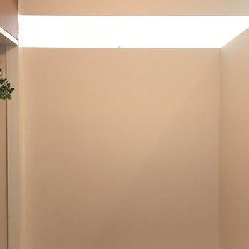 洋室は3帖の広さ。リビングからの光が入ってきます!