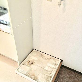 洗濯パンは玄関横に。