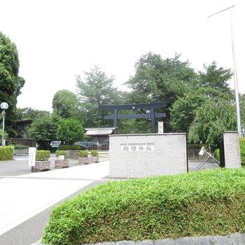 すぐ近くの松陰神社は緑がたくさん