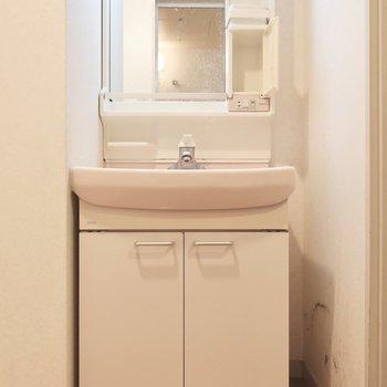 洗面台はスタンダードな大きさかな(※写真は清掃前のものです)