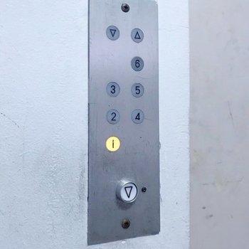 エレベーターのボタンもミニマムでグッときました