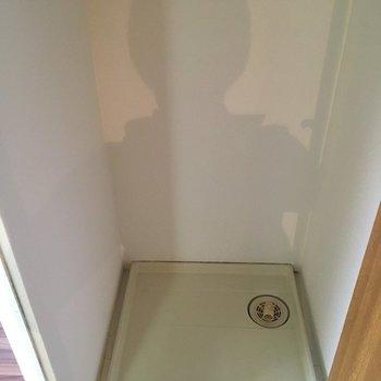 洗濯機置き場は扉がついているので隠せます
