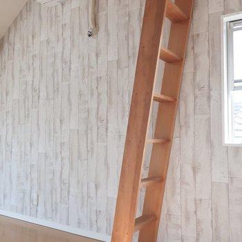 ロフトへはこのはしごで。もはや木登り感覚!(※写真は清掃前のものです)