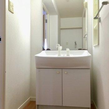 入ってすぐ左に洗面台。この大きさななので、家族で使っても◎