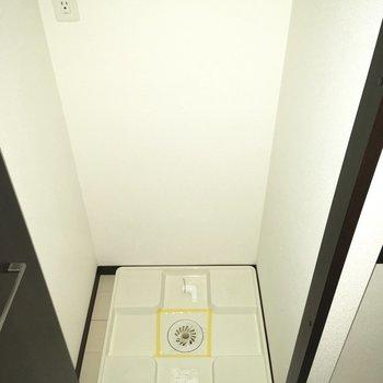 扉付き、洗濯機のサイズに注意したほうが良さそう。※写真は通電前のものです・フラッシュを使用しています