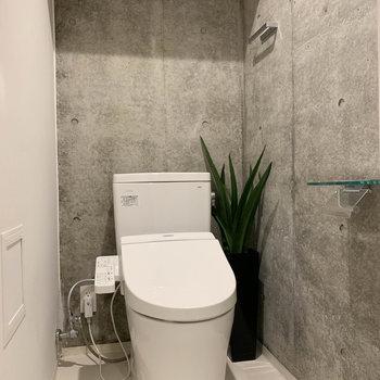 トイレです。コンクリに緑があると、映えるんだなあ。