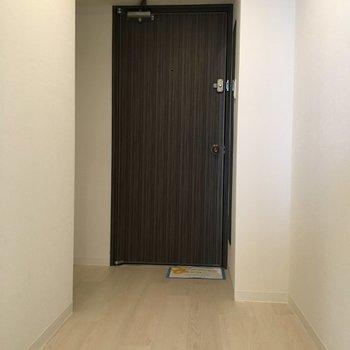 フラットタイプの玄関です