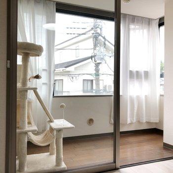 【LDK】奥にはサンルーム!こんな風にキャットタワーなどが置けそう※家具はサンプルです