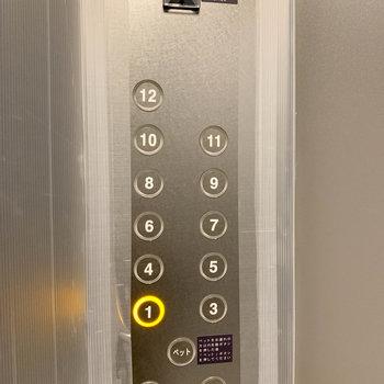 エレベーターにはペットボタンもついてます。※写真は前回募集時のものです