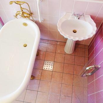 ピンクの切り替えがかわいい※写真は3階の同間取り別部屋のものです
