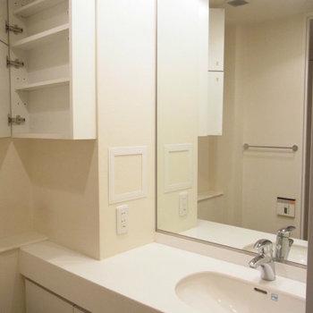 洗面台もスタイリッシュ※写真は2階の反転間取り別部屋のものです