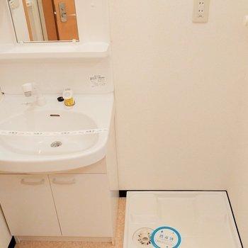 洗面所もゆったりと ※写真は2階の似た間取り別部屋のものです