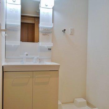 ゆったりした洗面所※写真は同タイプの別室