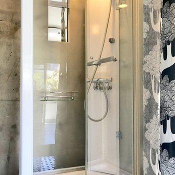 お風呂は潔くシャワーのみ。カーテンのありがたみ・・!