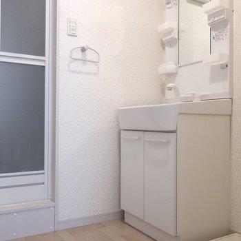 サニタリーも清潔感◎※写真は2階同間取り別部屋のものです