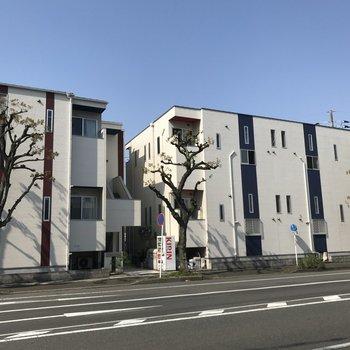 左側の建物です。