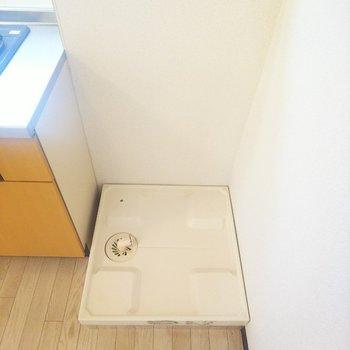 洗濯機置場はキッチンの脇にあります。
