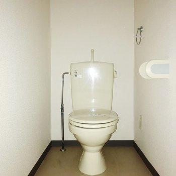 トイレはゆったりと。棚も置けそうです。※フラッシュを使用しています